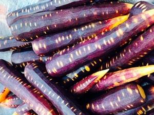 紫にんじん.jpg